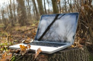 Photo of a laptop on a tree stump during fall.