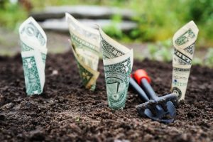Image showing money growing out of the ground.