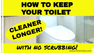 Twitter link share image for How to Keep Your Toilet Bowl Cleaner, Longer post.