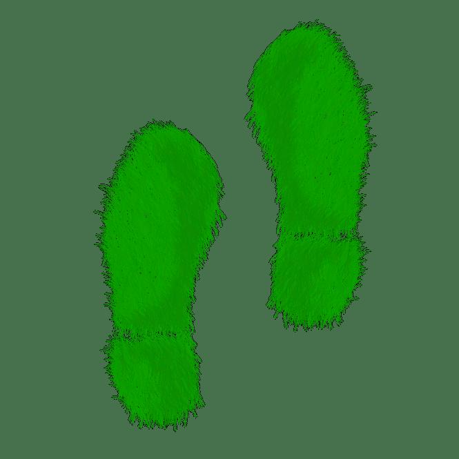Green grass footprints.